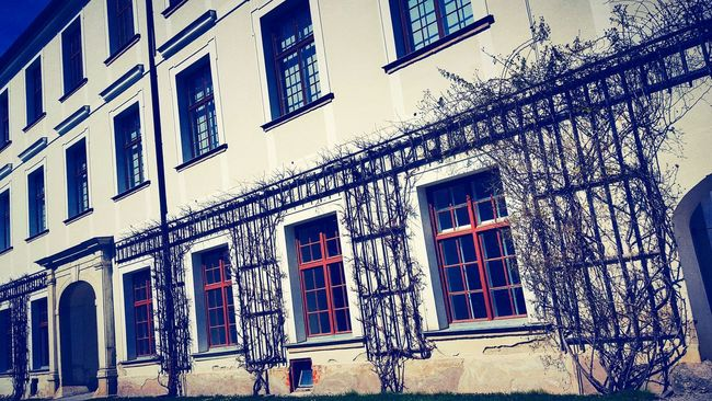 Herrenchiemsee GERMANY🇩🇪DEUTSCHERLAND@ EyeEm Germany Herrenchiemsee Original Experiences Showcase June My Capture  Eyeem Photography My Point Of View Fresh On Eyeem  The Week Of Eyeem Hello World Building Exterior Windows And Doors Outdoor Photography Plants On The Wall