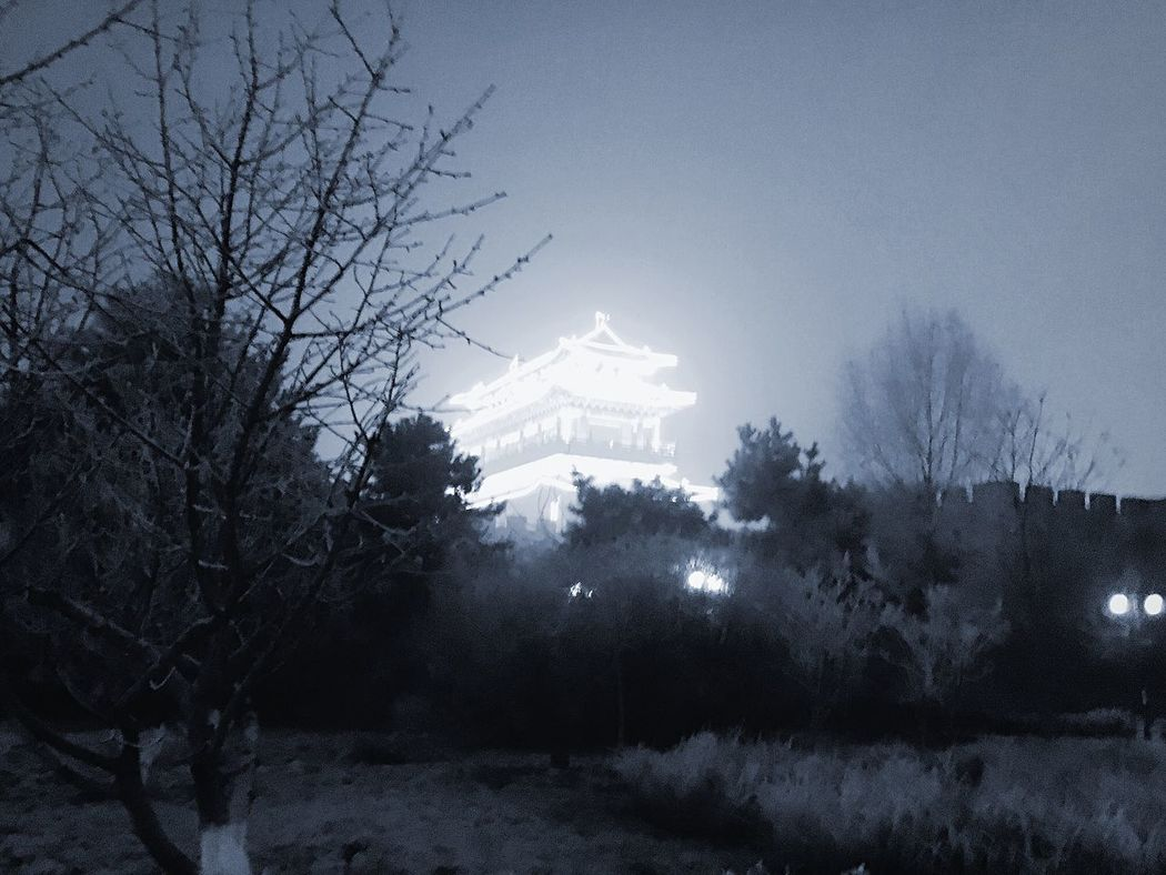 Night Nightphotography Night Glow Temple Trees Shrubs Hope Chinese Architecture