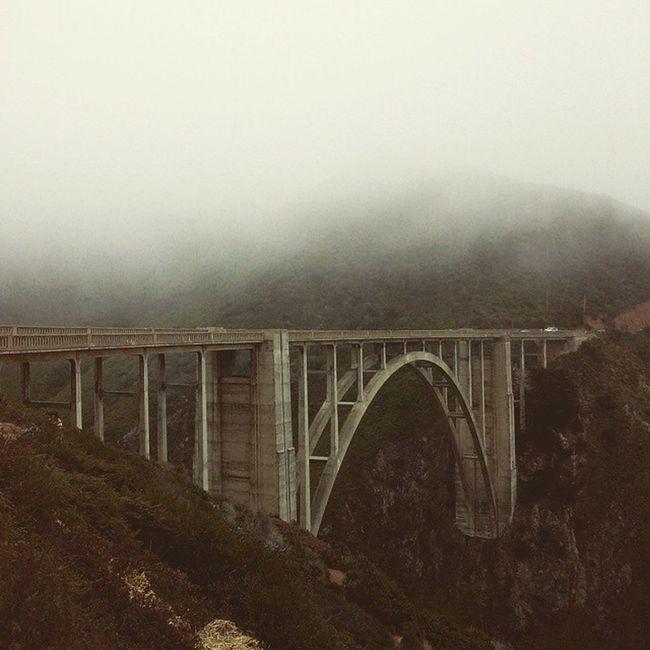 Coastroad Fog