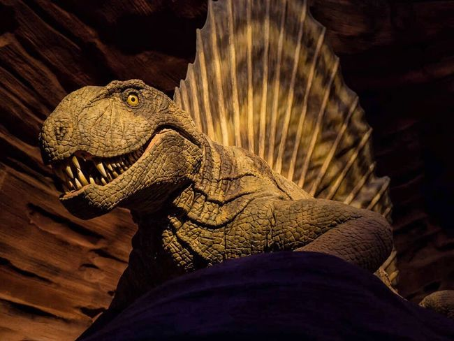 Saurierpark Gondwana Photo GERMANY🇩🇪DEUTSCHERLAND@ Saarland Animal Photography Germany Dinosaur Museum