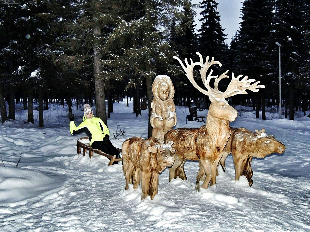 snow, winter, tree, cold temperature, animal themes, reindeer, outdoors, nature, mammal, day, domestic animals, one person, people