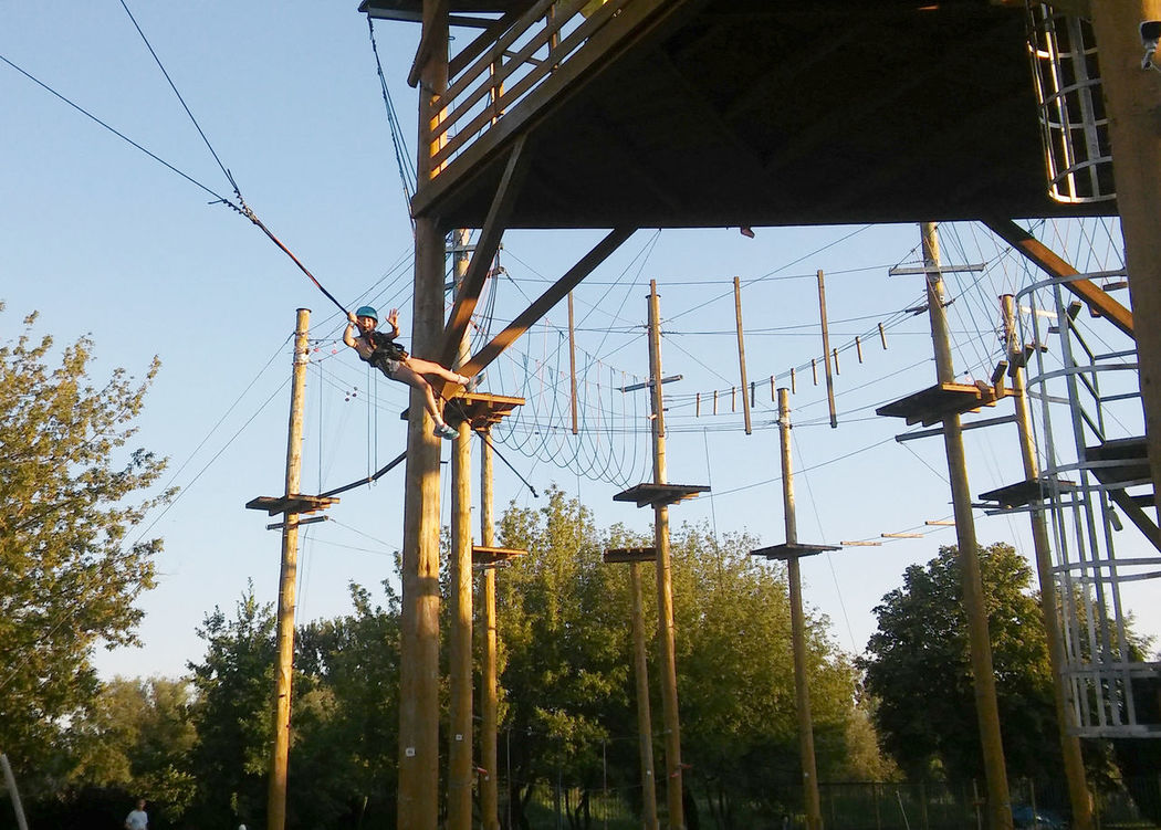 Adrenaline Climbing Day Growth Leisure Activity Low Angle View Nature No People Outdoor Park Outdoors Rope Sky Tree