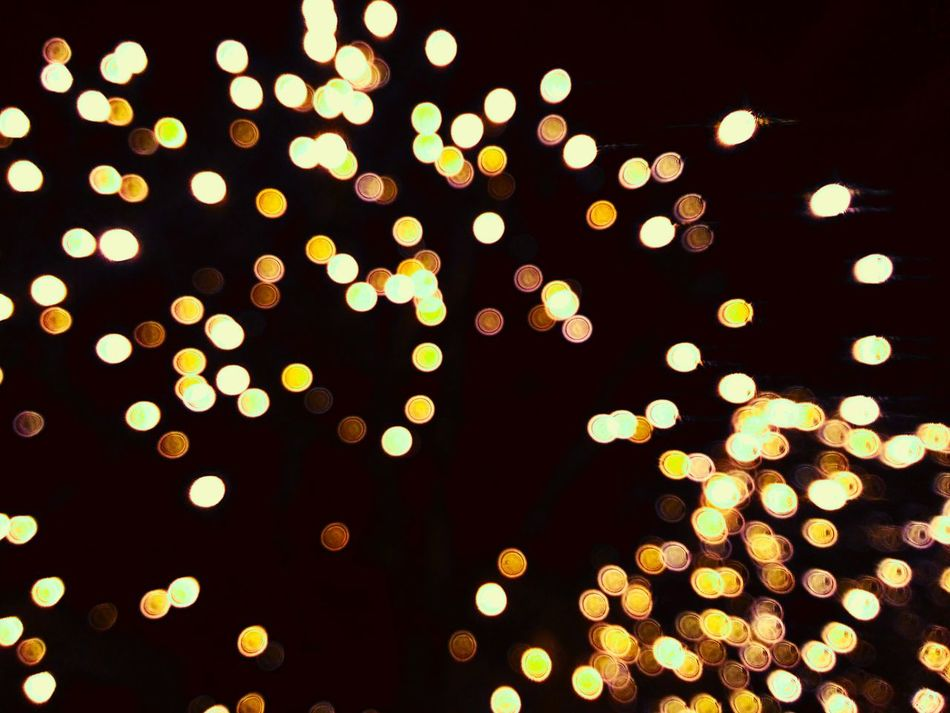 Dreaming within the dream Metz Taking Photo By Night Goodbye Christmas Lights Bubbles Learn & Shoot: After Dark
