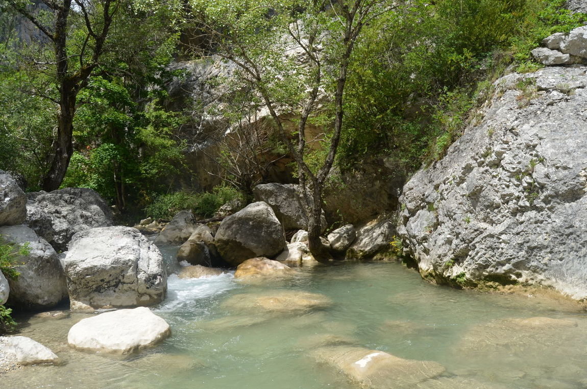 Peace And Quiet Waterfall Way Down The Mountain Frence Water Beauty In Nature Tree Nature Summer Gorges Du Verdon I Could There All Day We're So Blessed
