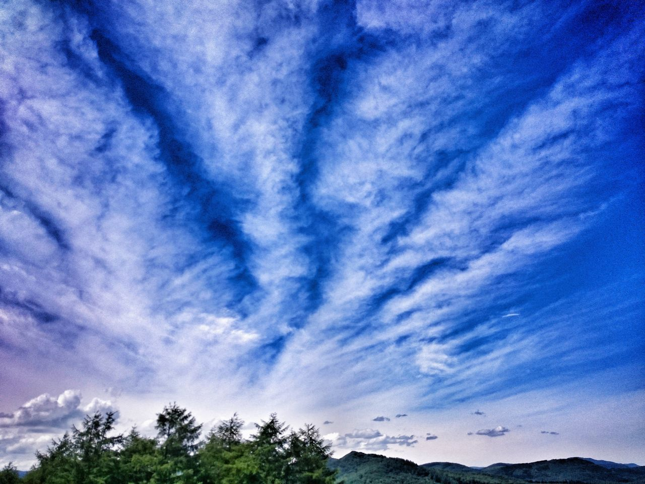sky, cloud - sky, beauty in nature, scenics, blue, nature, tree, no people, tranquility, low angle view, day, outdoors