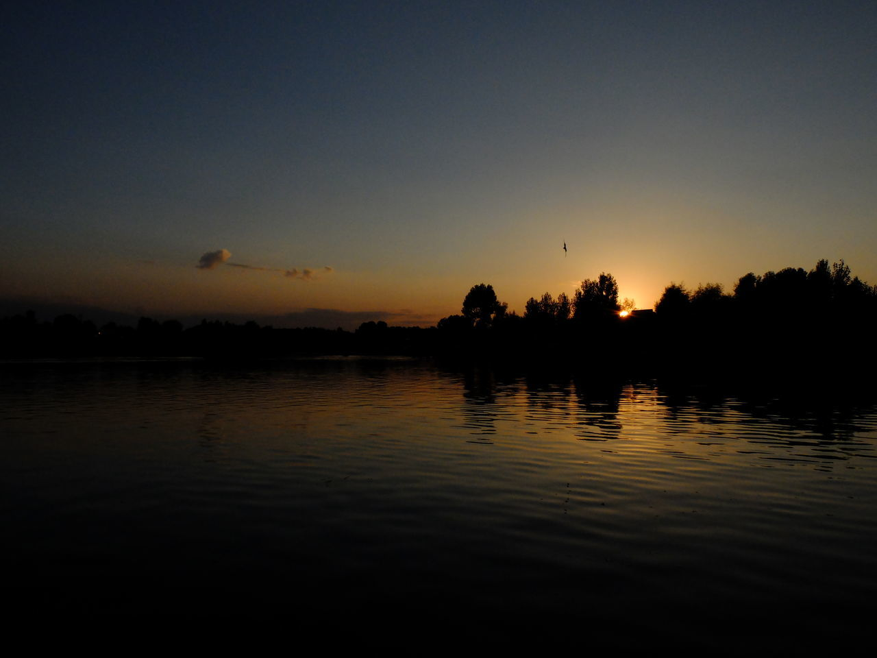 Animal Themes Beauty In Nature Bird Day Lake Nature No People Outdoors Reflection Scenics Silhouette Sky Srinagar Kashmir Sunset Tranquility Tree Water