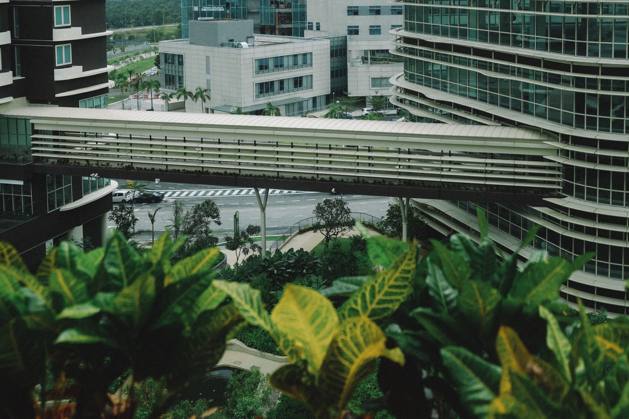Sky Bridge Transportation Green Color Growth No People Building Exterior Day City Architecture Outdoors Nature Architecture_collection Fujifilm Travel Destinations City The City Light Cityscape High Angle View Modern Skyscraper Nature Built Structure Architecture Sky
