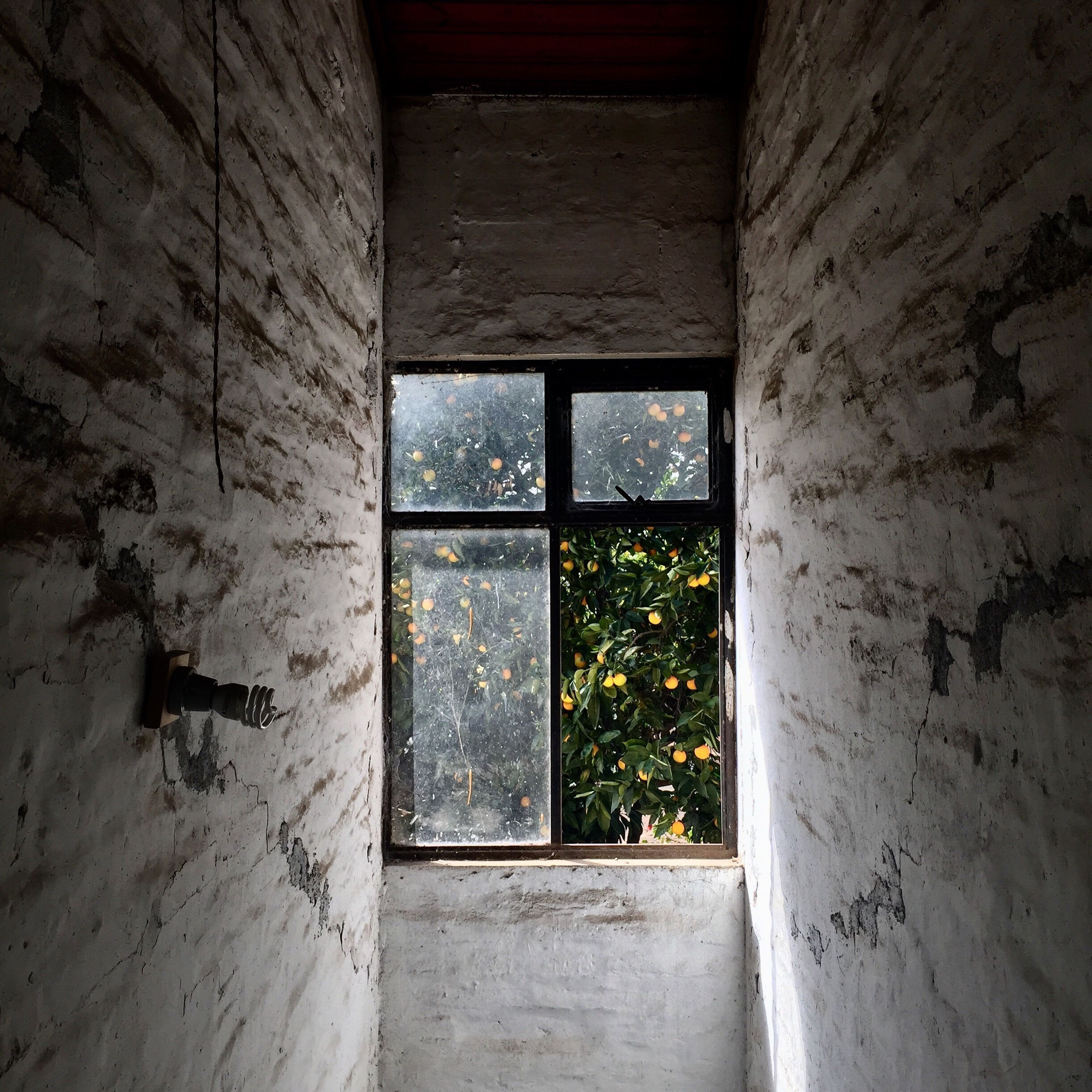window, wall - building feature, indoors, architecture, built structure, no people, abandoned, day, close-up