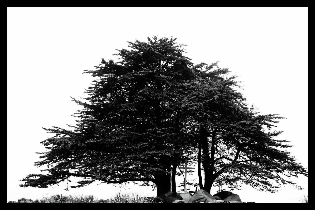 On The Way Relaxing Enjoying Life Equilibrio Descanso Tree Landscape Relax Walking Simple Things In Life Travel Photography Hollidays Sea Mountains Monochrome Photography Panoramic Photography Panoramic Cloudy