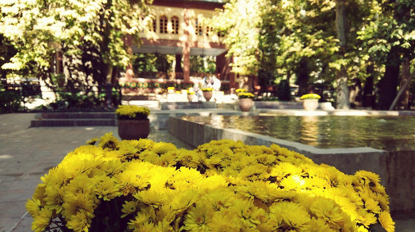 Tehran, Iran Iranian Garden