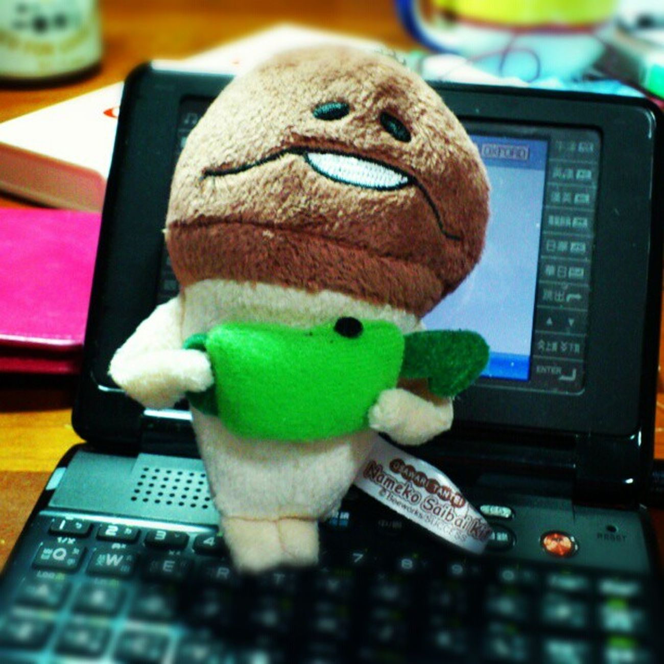 A gift from my lovely sister :) so adorabbbleee! Nameko Namepara なめこ おさわり探偵 keychain japan cute