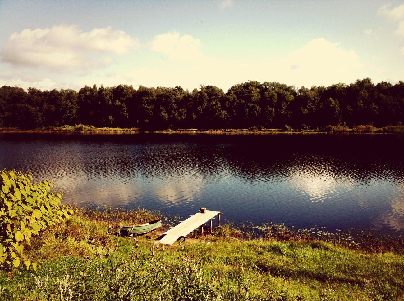 Sun Autumn River Nature