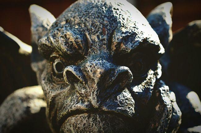 Grumpy Selfie 😡 Self Portrait Not In A Good Mood Having A Bad Day Make Me Laugh  Grumpy Gargoyle Gothic Garden Ornament Statue Made Of Stone Nikon D3200