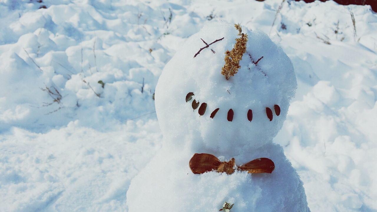 Snowman Snow Winter Frosty The Snowman