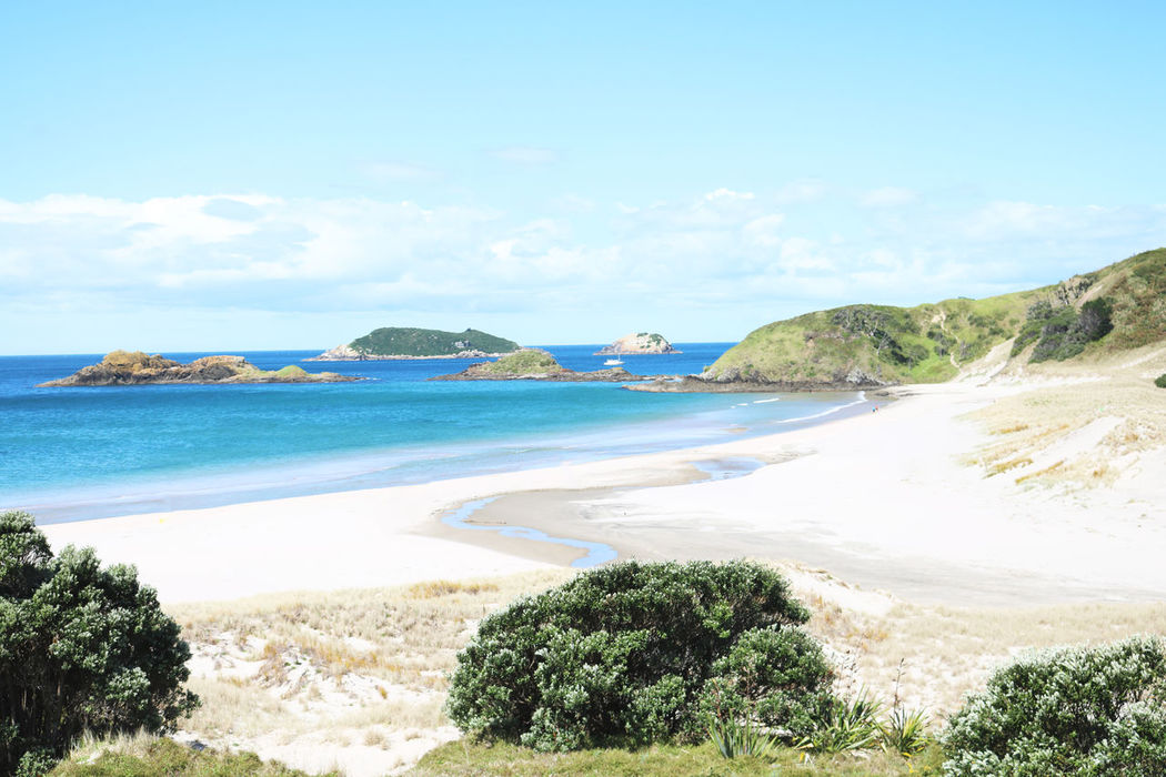 A beautiful shot of a white sandy beach at Tutukaka Coast overlooking the Pacific Ocean. Beach Beauty In Nature Blue Cloud - Sky Coastline Horizon Over Water Idyllic Landscape Nature No People Northland New Zealand Outdoors Postcard Sand Scenics Sea Sky Tranquil Scene Tranquility Travel Travel Destinations Tropical Climate Tutukaka Coast Vacations Water