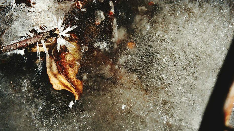 Water No People Close-up Motion Outdoors Day Nature Eiskristalle Iced Leaf Eisblätter Icecrystals Winter Nature Stream Vereist Frozen Nature Icewater Iced Stream Backgrounds Ice Icehole Wasser Eisschicht