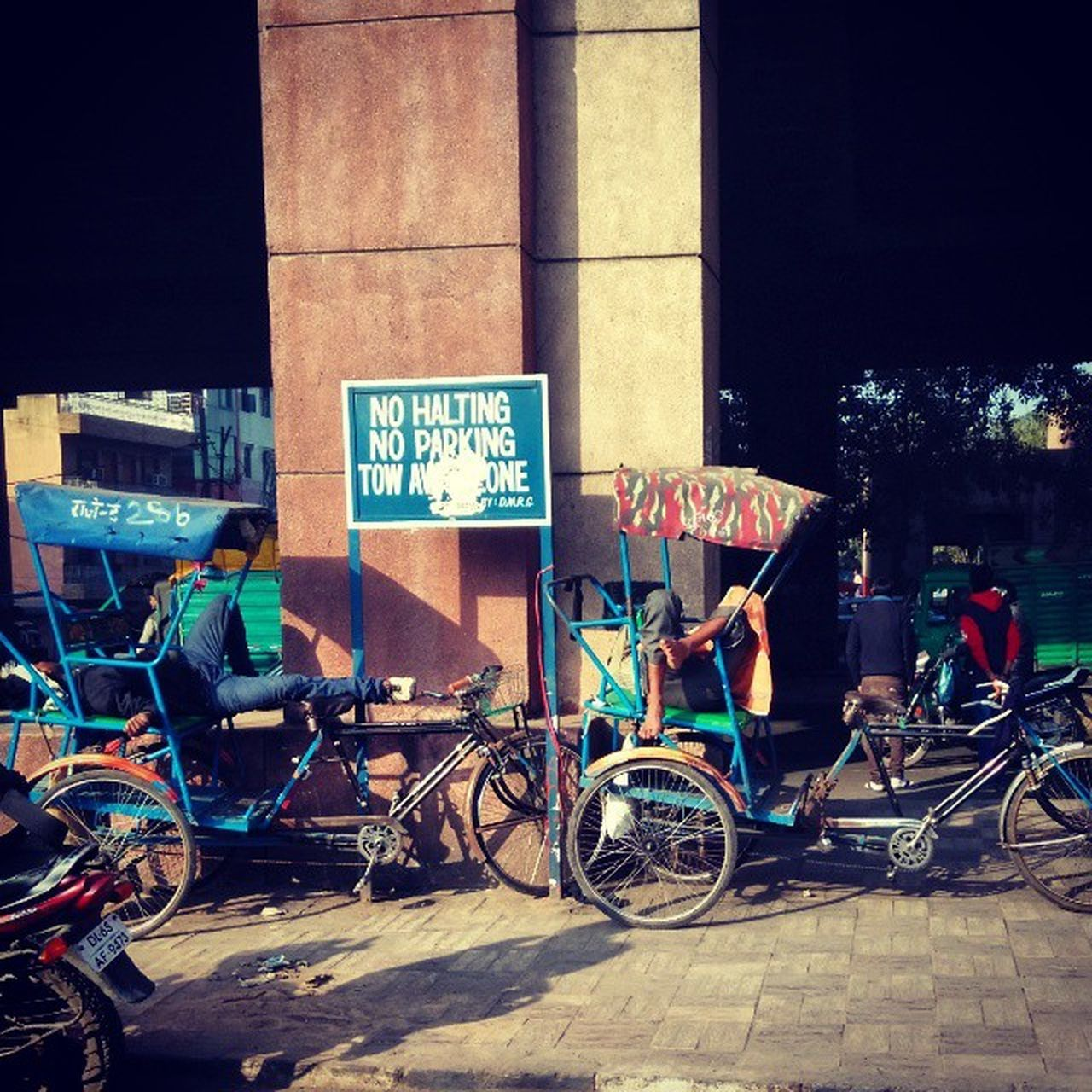 Sunny afternoon Winter Delhi Basking Metrotrip