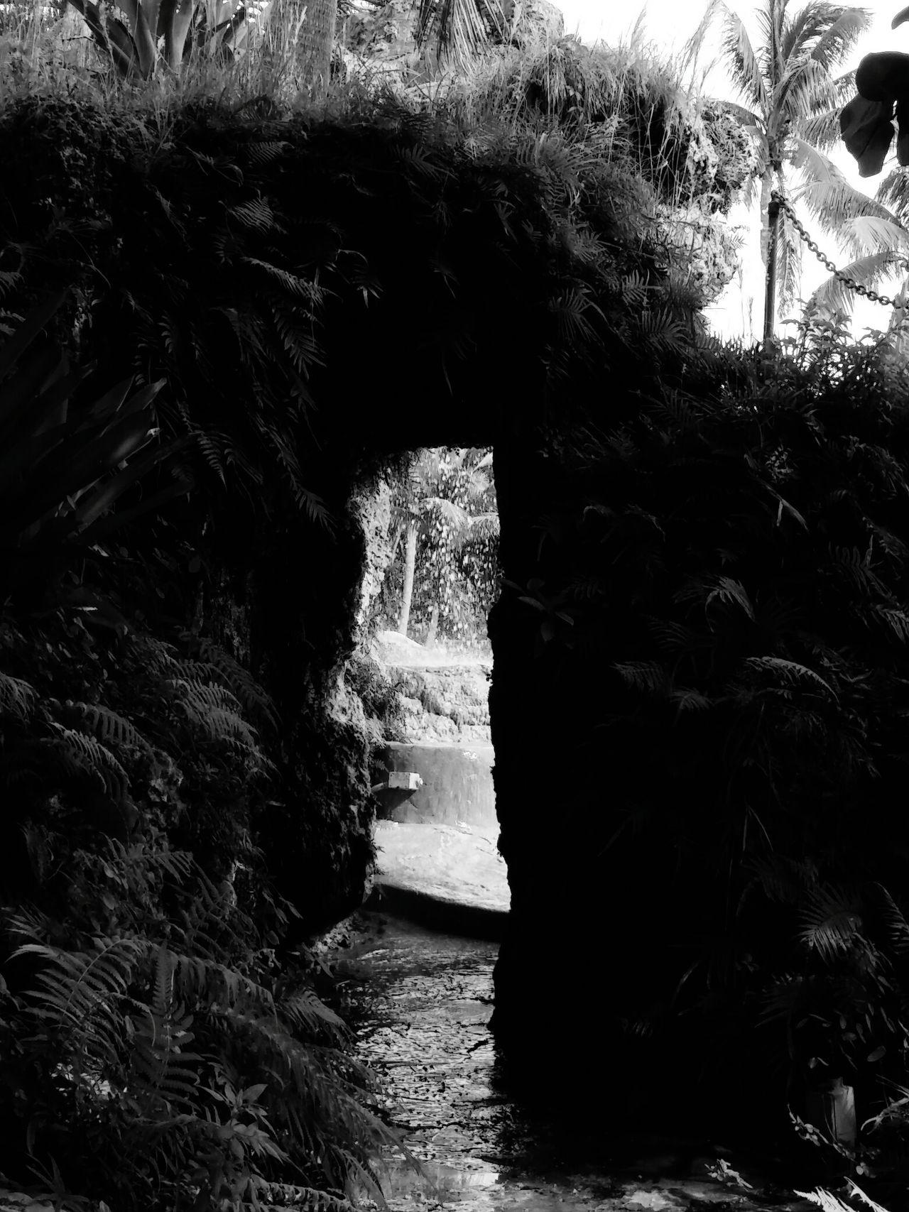 Blackandwhite Photography Girlskick Streetphotography Natur!!
