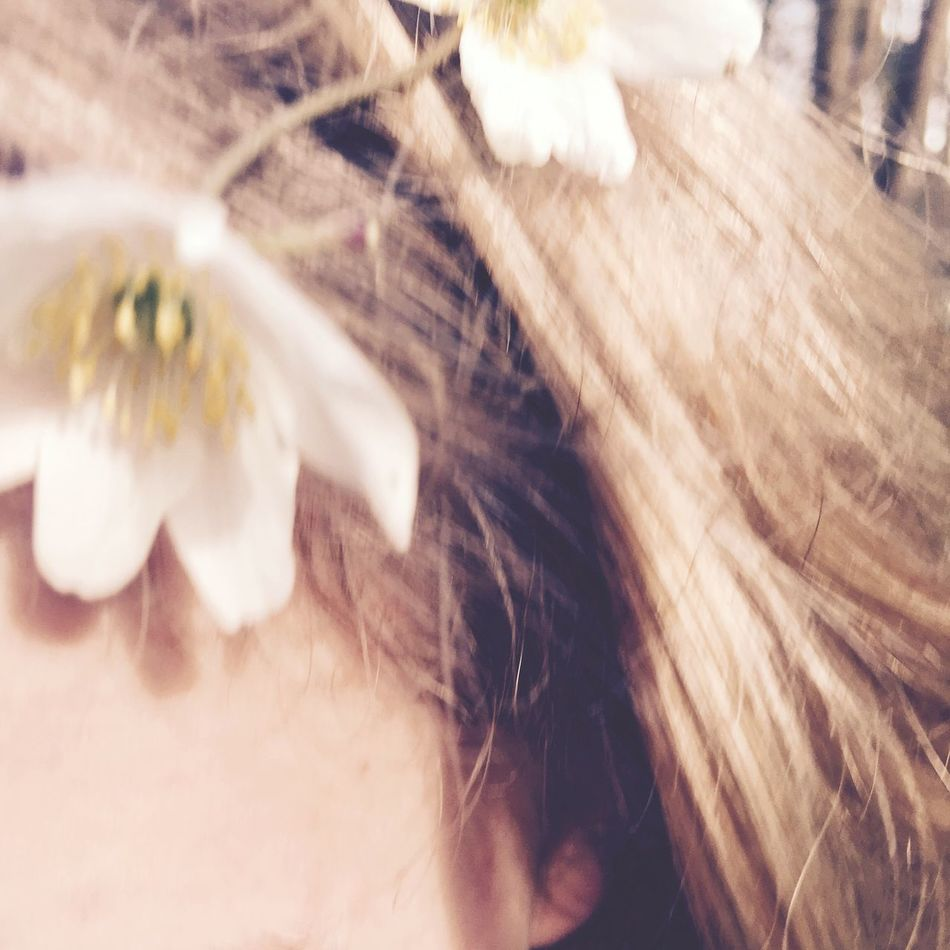 Lifestyles Flower Close-up Real People One Person Indoors  Freshness Fragility Nature Day Flower Head Wedding Bridal Hair Unsharp Vintage Accesories Fresh Sunny Close Up Maximum Closeness Detail
