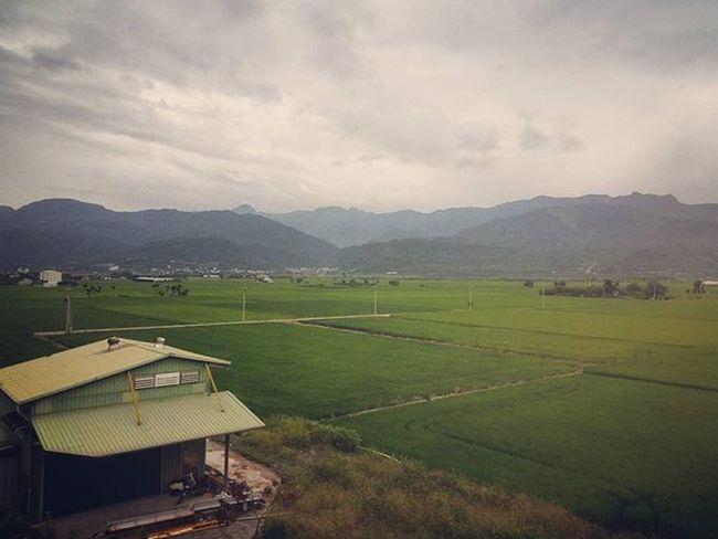 火車上美景依舊 這是花東最純樸的美
