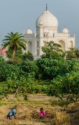 Agra Architecture India Micha D. MOVE1962 Outdoor Rajasthan Taj Mahal Travel Photography UNESCO World Heritage Site The Photojournalist - 2017 EyeEm Awards