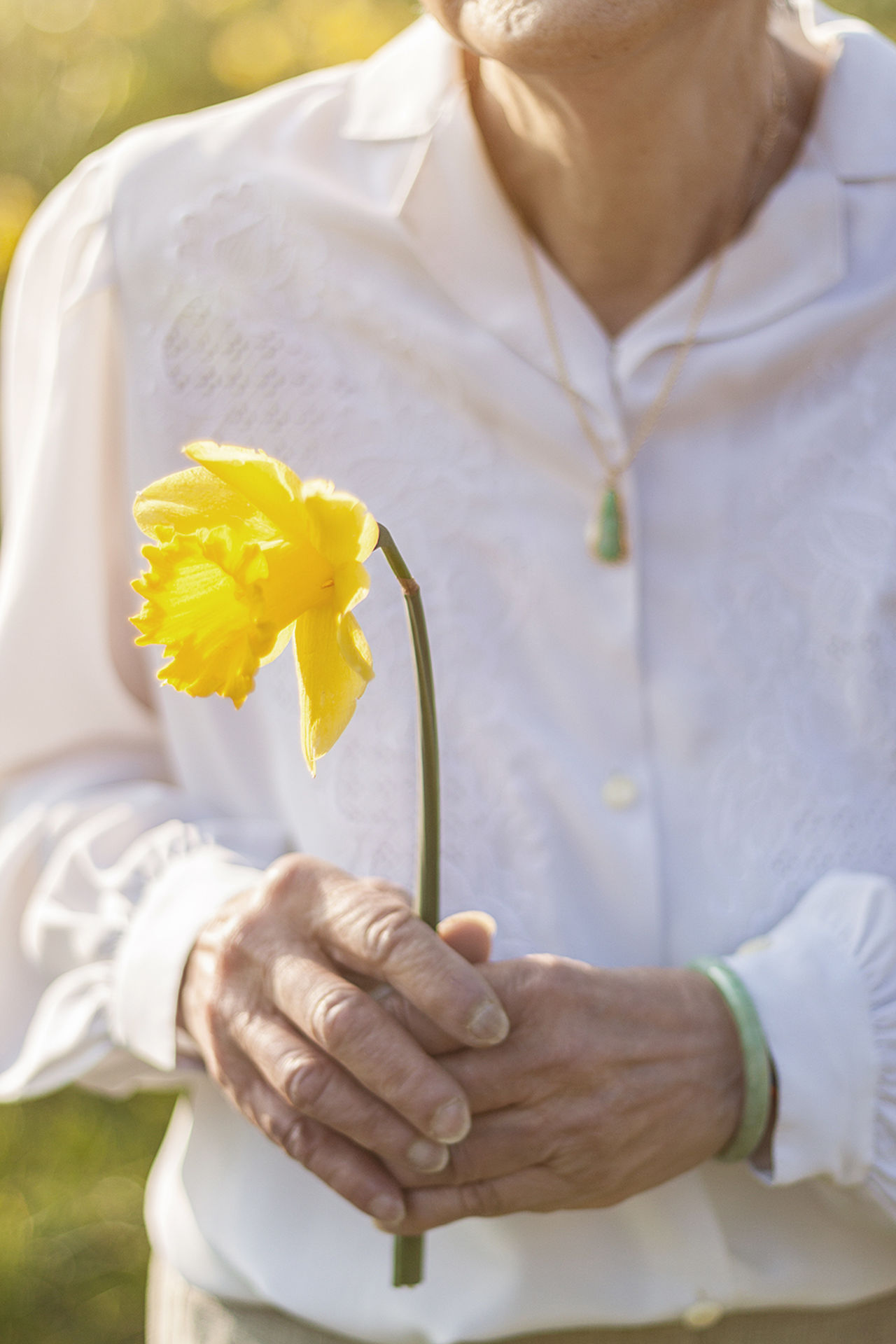 Close-up Daffodil Flower Grandma Granny's House Holding Human Body Part Human Hand Old Woman One Person Outdoors Womanity