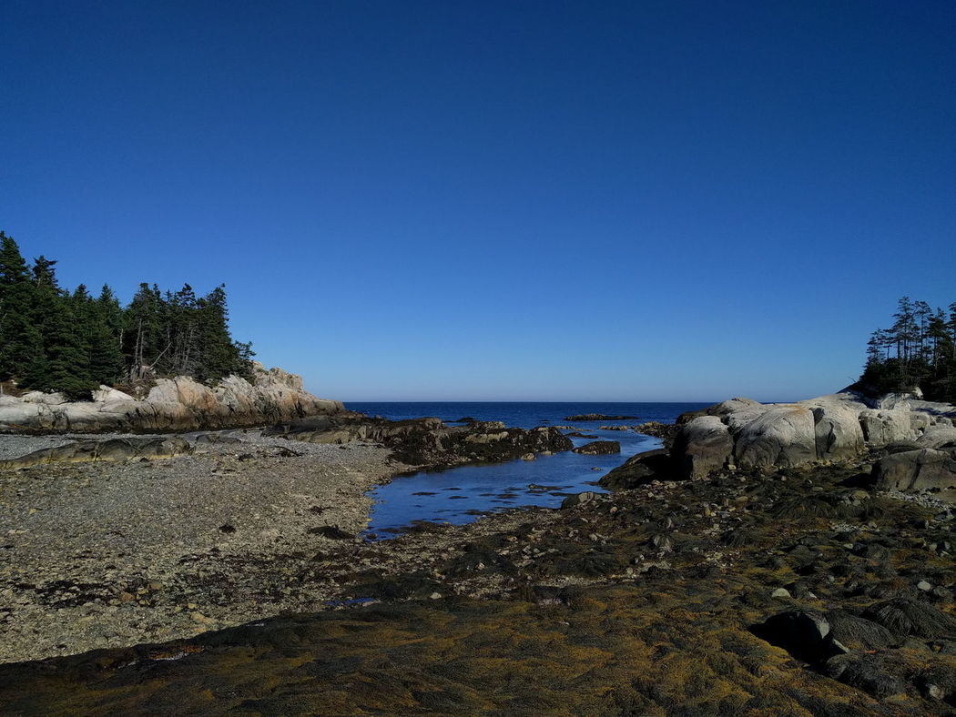 Isle Au Haut Maine Idyllic Low Tide. Tide Out Water Sea Scenics Tranquil Scene Tranquility Beauty In Nature Nature Shore Coastline Hiking Solitude Remote