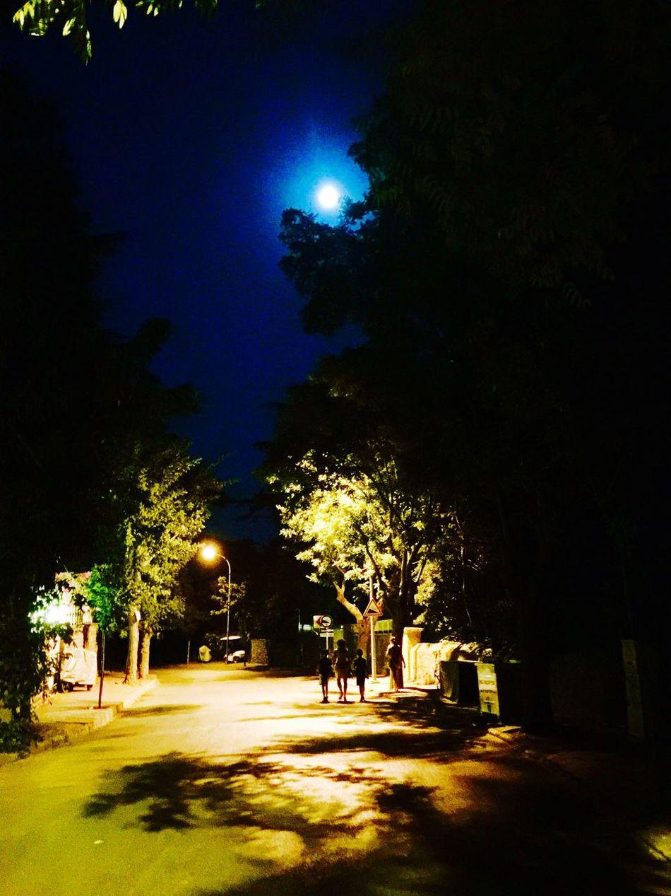 Full Moon Büyükada Prinkipo Nightphotography Night Lights Night View Princeislands Trees Mobile Photography IPhoneography Mobilephotography