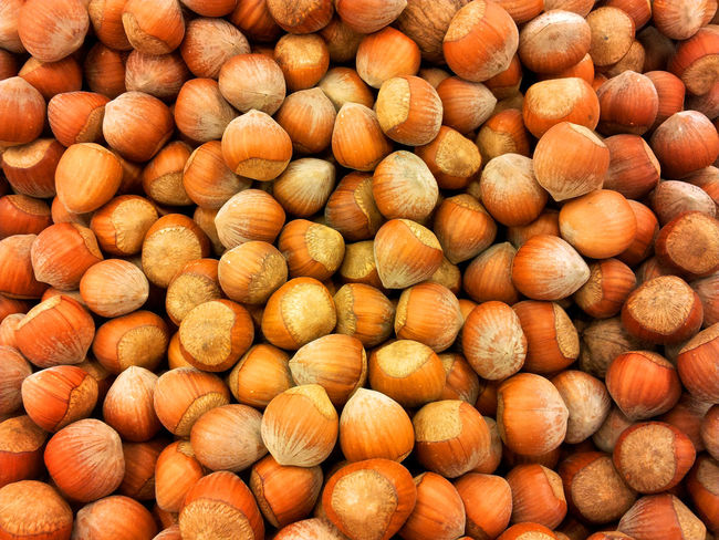 Close up of hazel nuts Abundance Arrangement Backgrounds Brown Close-up Color Focus On Foreground Food Food And Drink Food Photography Foodphotography Freshness Fruit Hazelnut Healthy Healthy Eating Large Group Of Objects No People Nuts Organic Ripe Selective Focus Vegetarian Vegetarian Food Yummy