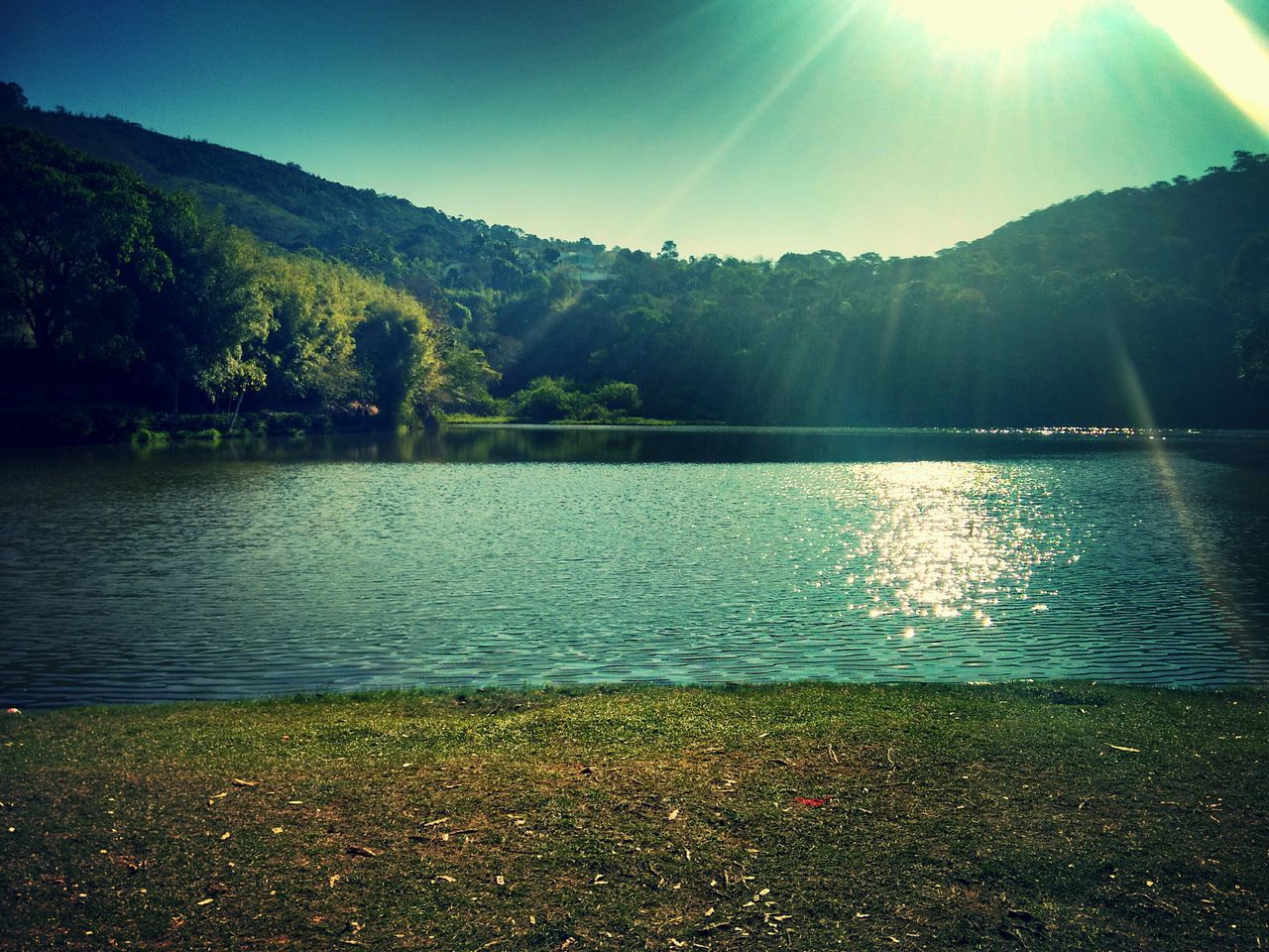 Relaxing Green Beautiful Nature Lake Photography Nature_collection EyeEm Nature Lover Lightsun