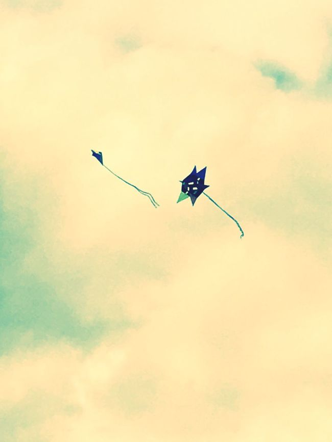 Two Objects Two Kites Hampstead Heath Showcase July Pretty♡