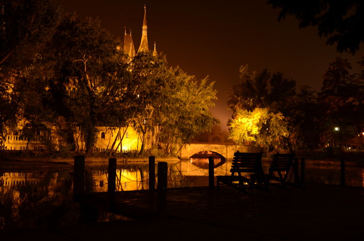 Branch Castle Castles Famous Place Fence Night Tourism Vajdahunyad Vár Water Hungary