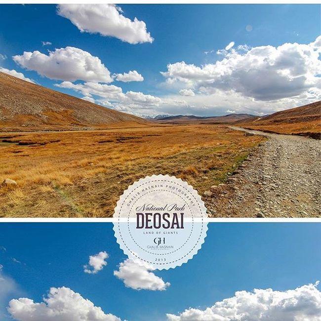 From the Archive of 2013 DEOSAI II Deosai Pakistan Skardu Gilgitbiltistan Autumn Roadtosheosar Ghalibhasnainphotography Ghalibhasnain Plains VSCO Nature Beautifulpakistan @Pakistan