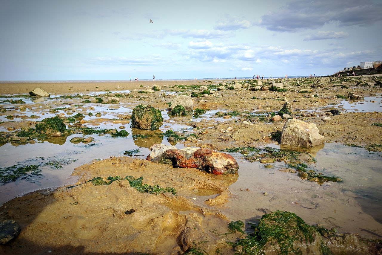 Rocky Formation Water Beach Outdoors No People Sea Nature Day Sky Low Tide Rockpools Seaweed Pebble Beach Close-up British Beaches Beauty In Nature Sand Dune