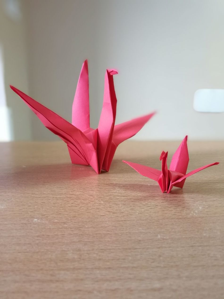 Red Redcolour Origami Birds Origami Birds Origamicolors Origami Art Friends Lovelovelove