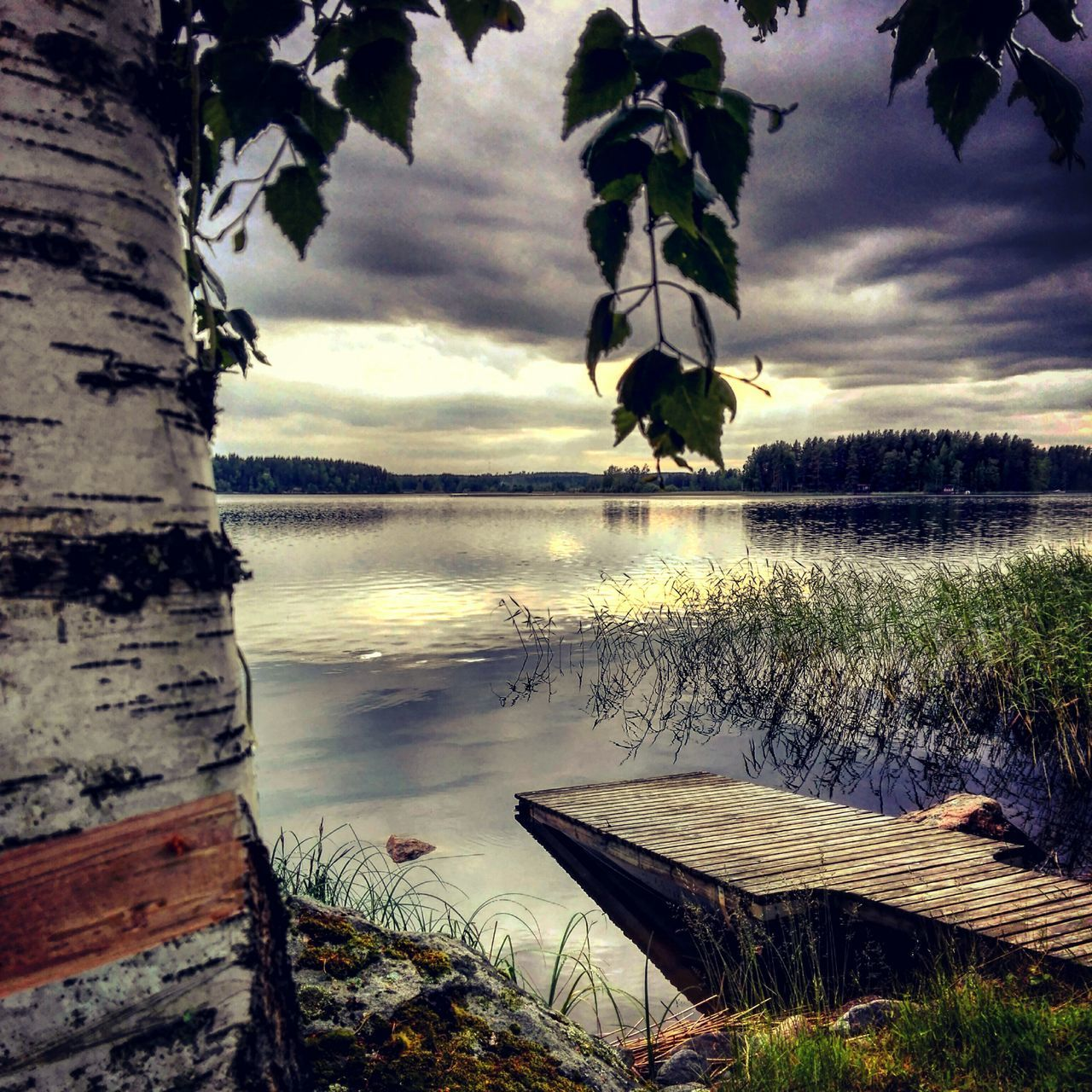 Summer cottage Summercottage Summer Memories 🌄 Lake Water Nature Beauty In Nature Naturebeauty Tree Colourful Beach Cloudscape Lake View Coloured Sky Summertime Photographer Photography Nature Photography NatureloversFinnish Nature Landscape_photography Day Outdoors
