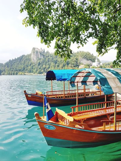 Water Nautical Vessel Tree Day Nature Outdoors No People Beach Sky Bled Bled, Slovenia Bled Lake Slovenia BledCastle Bled Slovenia Bled Castle Bled Lake Slovenia Slovenija Balkan Beautiful Nature