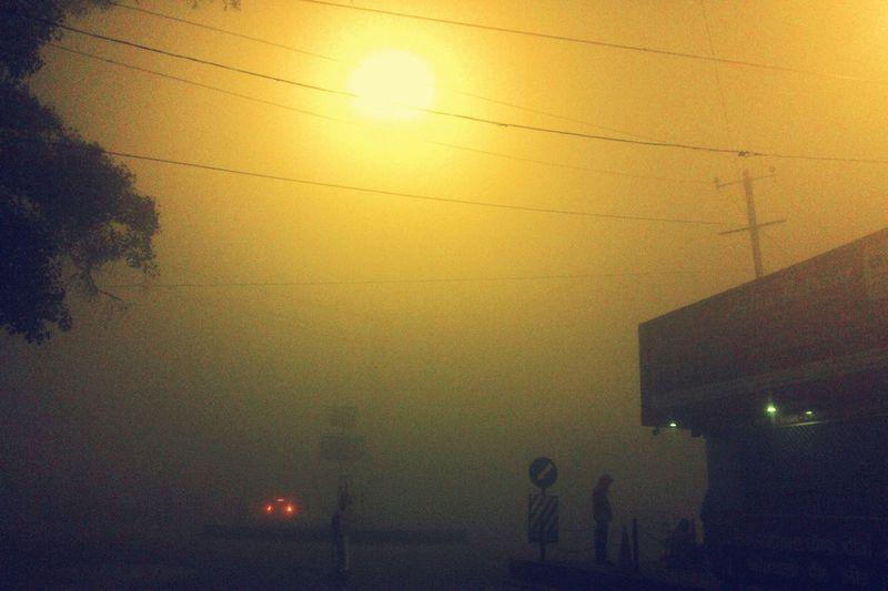 early morning 😉 Street Light Early Morning Fog Day Wintertime Night Outdoors Sunset