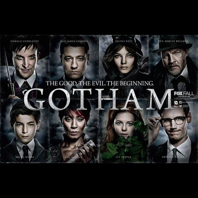 So let me get this straight... There is a TV show... about the origins of Batman and the villains? Drool Cantwait Diesofexcitement