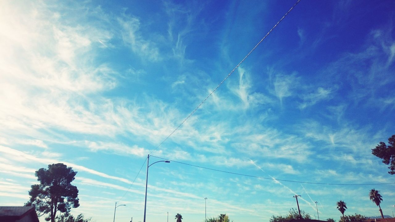 sky, low angle view, cloud - sky, day, outdoors, blue, nature, tree, vapor trail, beauty in nature, no people, contrail