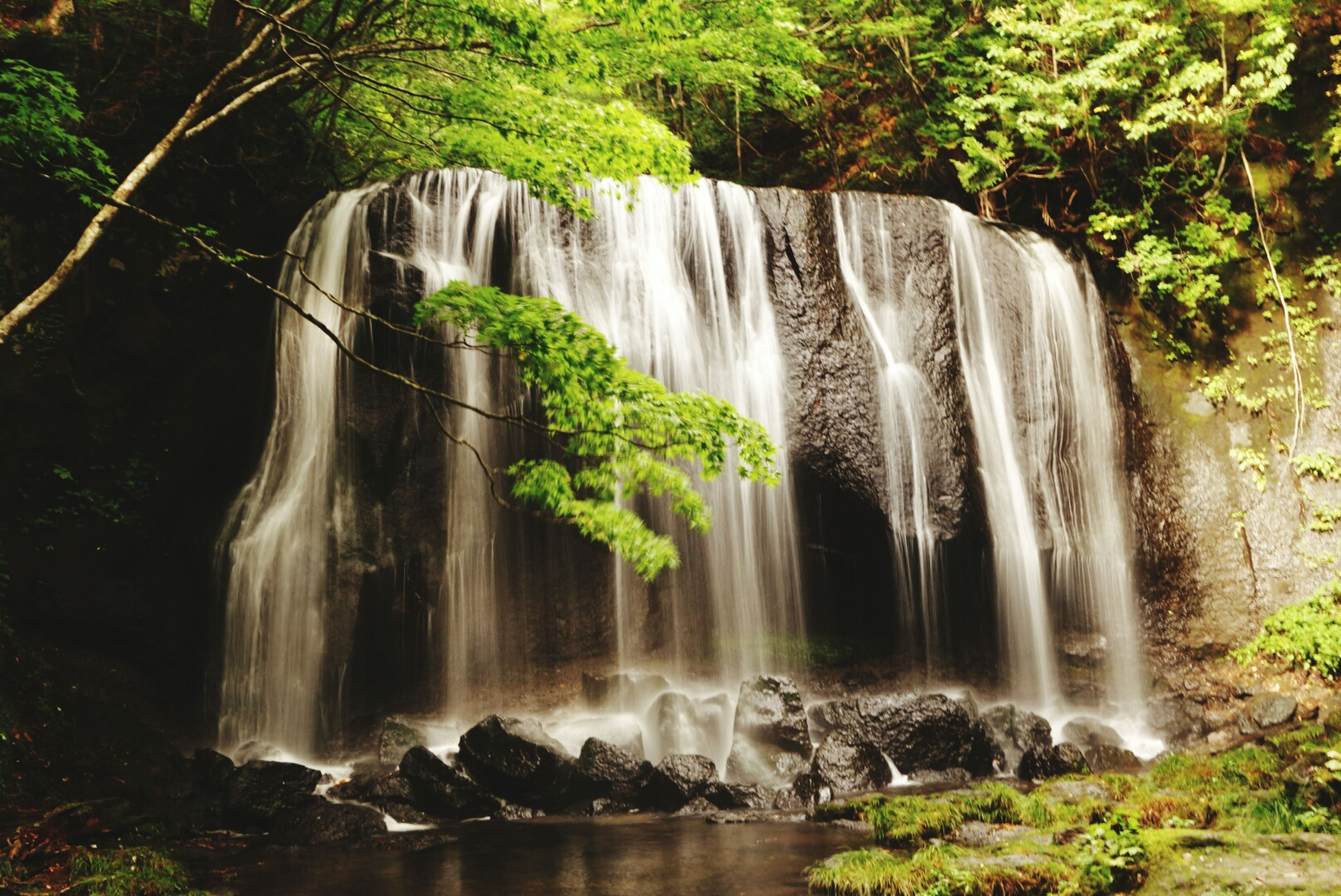 waterfall, motion, water, long exposure, flowing water, flowing, beauty in nature, tree, forest, scenics, rock - object, blurred motion, nature, splashing, environment, power in nature, idyllic, rock formation, plant, day