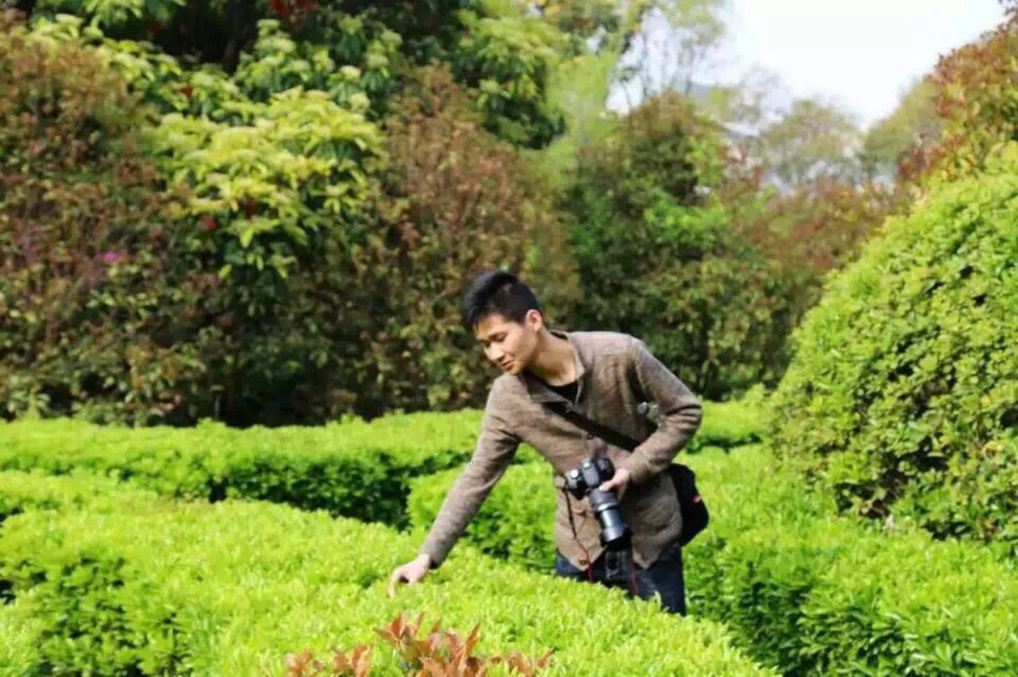tree, green color, lifestyles, leisure activity, young adult, casual clothing, growth, young men, full length, person, plant, forest, sitting, nature, grass, portrait, front view, looking at camera