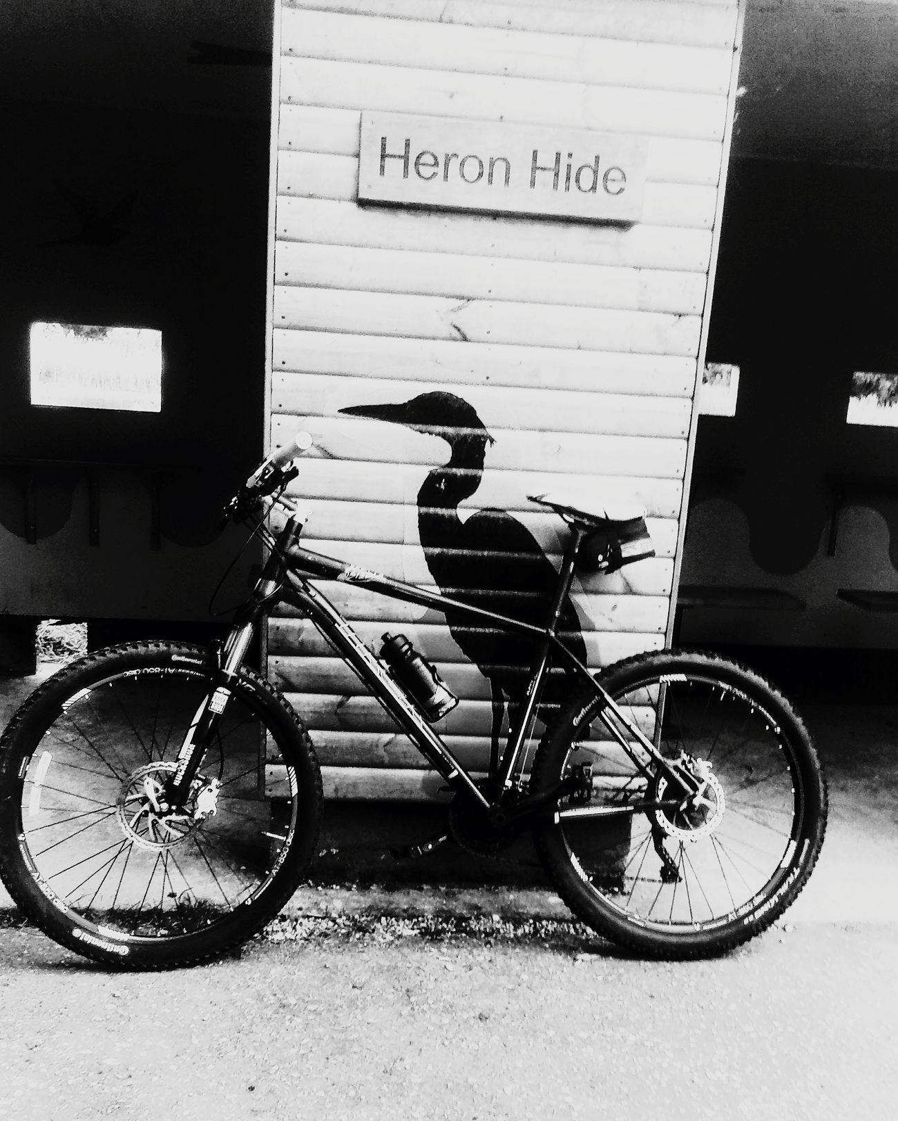Bird on bike Bicycle Mode Of Transport No People Outdoors Black & White Simple Photography Enjoying Life Difrentstyles Birdphotography Beauty In Nature On Bike Trip Relaxing Western Script Text Transportation Land Vehicle Communication Day Stationary