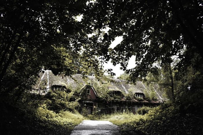 House in the woods.. Architecture Built Structure No People Tree Day Outdoors Building Exterior Nature Water Sky Close-up Abonded Buildings Travel Abdoned Bildung Photography Urbexexplorer Abondoned Places Lostplaces Rotten
