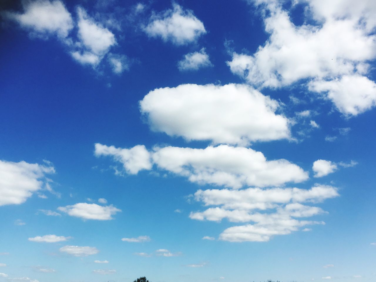 Cumulus Cloud Sky Nature Beauty In Nature Cloud - Sky Blue Backgrounds Low Angle View White Color Full Frame Sky Only Scenics Softness Tranquility No People Day Outdoors