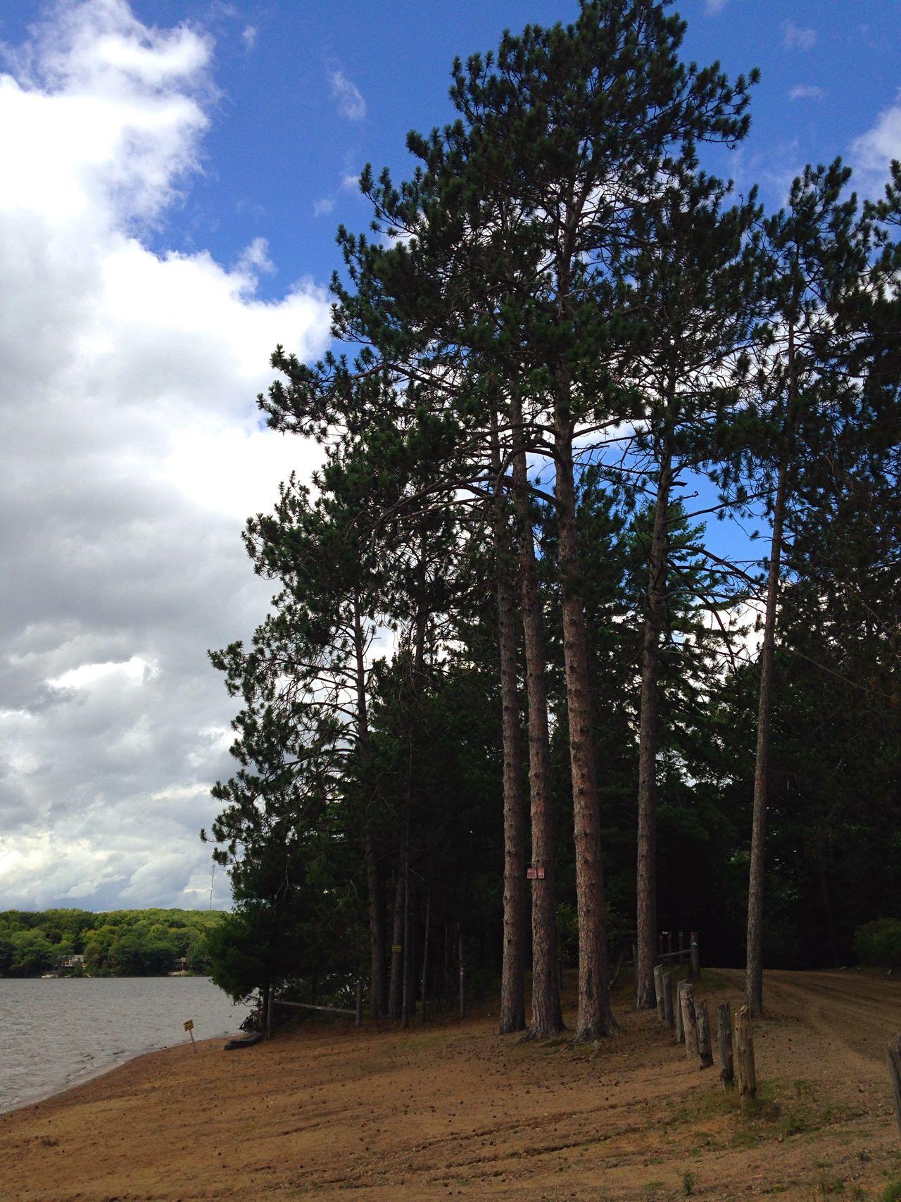 Lake View Lakeshore Pines Pinetrees Canada Coast To Coast