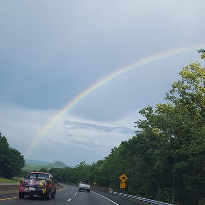 Aftermath of the storm. A beautiful rainbow Rainbow Double Rainbow Day Outdoors Tree Firefighter Spraying Nature Sky People Love Where You Live Summer Day Tripping North Carolina Beauty In Nature Spectrum Nature Multi Colored Curve