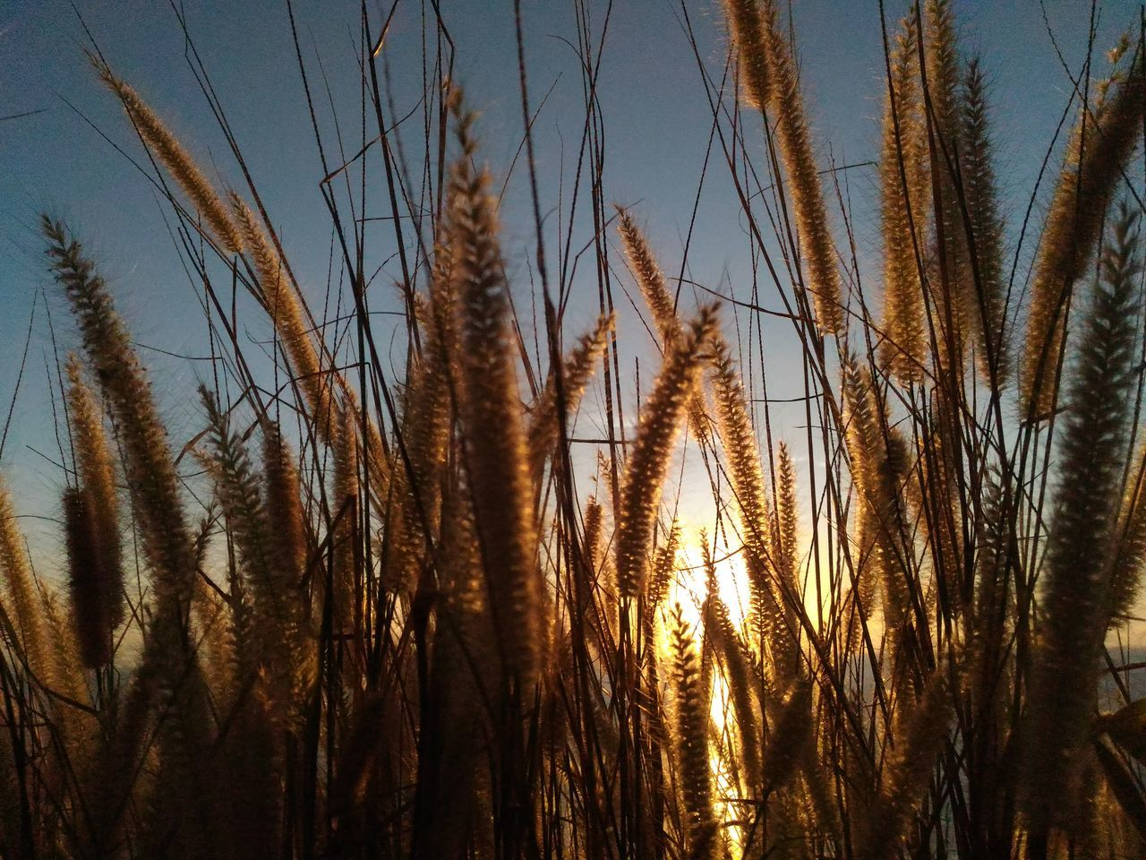 HIDE AND SEEK Scenics Nature Sunset Beauty In Nature Wanderlust Sightseeing Beautyofnature Nofilter No Edit/no Filter