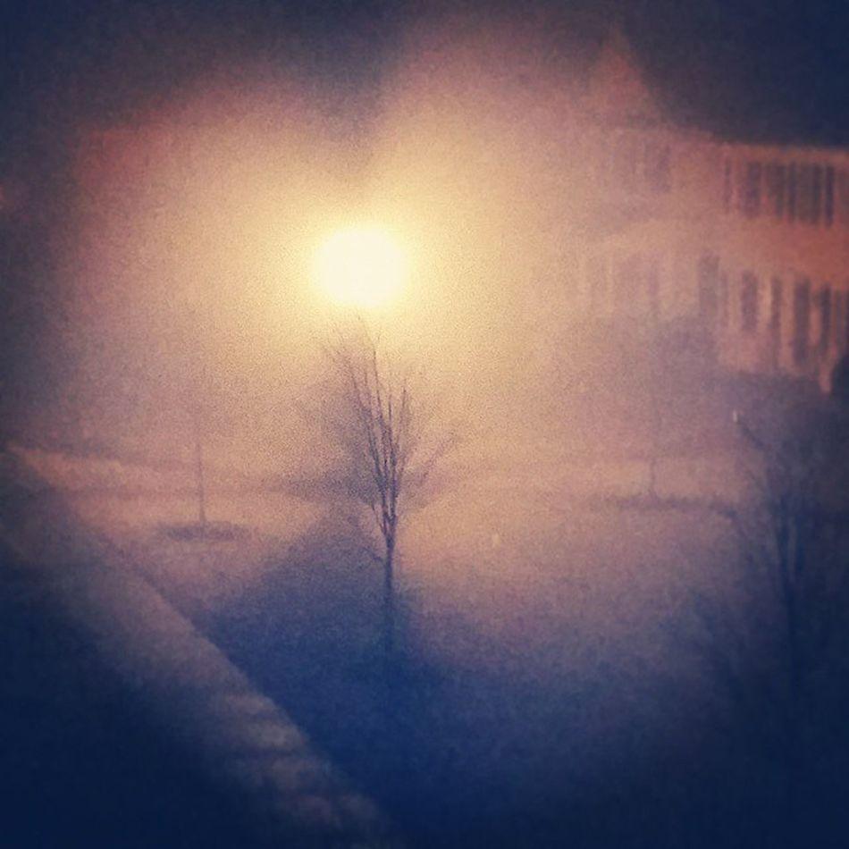 Day 70 Intense fog. Puddlewonderful365 Project365 Ciuan365 My_365 blur fog light dreamy GalaxyS5