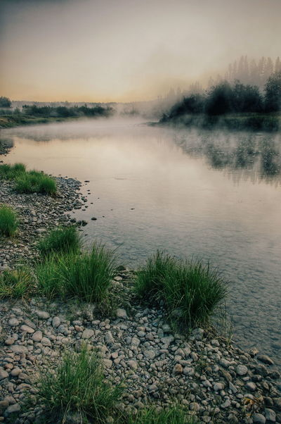 Earlymorning on the Priest River in Idaho . River View Misty Morning Fog Light Winding River Reflections Calm Still Nature Outdoors Travel Road Trip